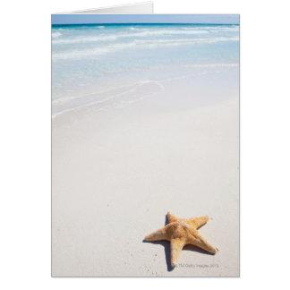 Riviera Maya Cards