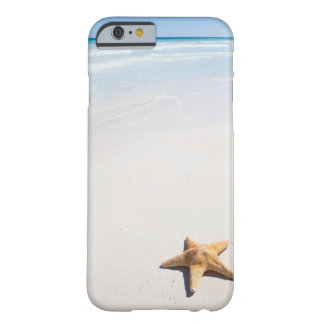 Riviera Maya Barely There iPhone 6 Case