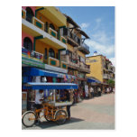 Riviera Maya (Playa del Carmen) Postcard