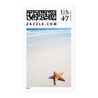 Riviera Maya Postage Stamp