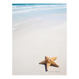 Riviera Maya Postcard