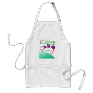 RNA Translation in Protein Synthesis Diagram Adult Apron