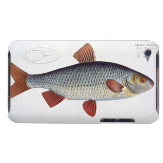 Roach (Cyprinus Rutilis) plate II from 'Ichthyolog iPod Touch Case-Mate Case