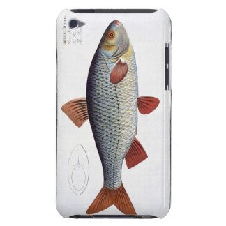 Roach (Cyprinus Rutilis) plate II from 'Ichthyolog iPod Touch Cover