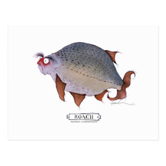 Roach fish, tony fernandes postcard