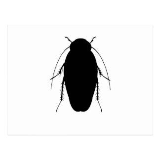 Roach Illustration Postcard