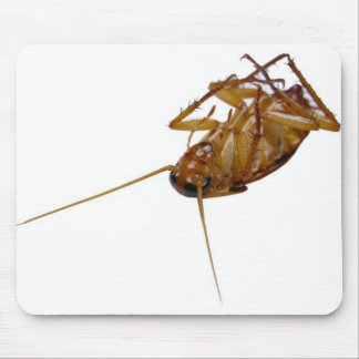Roach Mouse Pad