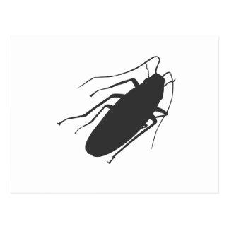 Roaches! Yick! Post Card