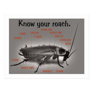 RoachWear Postcards