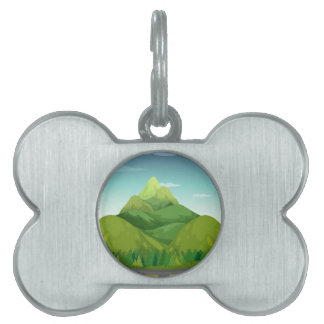 Road and mountain pet ID tag