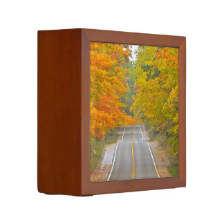 """""""ROAD AND TREES WITH FALL COLOR ALONG EACH SIDE"""" PENCIL HOLDER"""