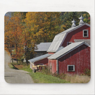 Road beside classic rural barn/farm in autumn, mouse pad