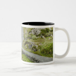 Road between Ballaghacahreen and Caherkeen. Two-Tone Coffee Mug