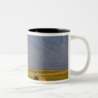 Road bicyclists race down back country road in Two-Tone coffee mug