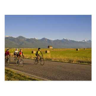 Road bicyclists ride down a back country road postcards