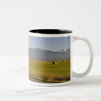 Road bicyclists ride down a back country road Two-Tone coffee mug