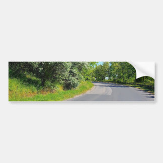 ROAD CURVE FOREST 1328 PHOTOGRAPHY NATURE TRAVEL BUMPER STICKER