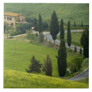 Road from Pienza to Montepulciano, 2 Tile