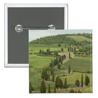Road from Pienza to Montepulciano, Pinback Buttons