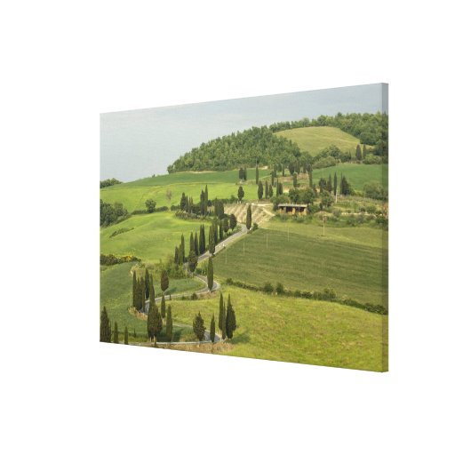 Road from Pienza to Montepulciano, Canvas Print