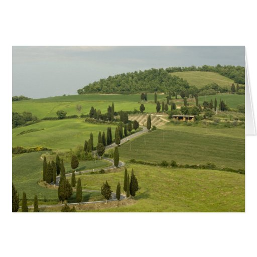 Road from Pienza to Montepulciano, Card