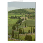 Road from Pienza to Montepulciano, Greeting Cards