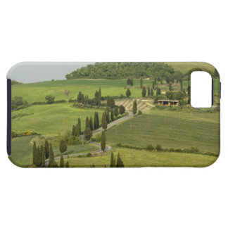 Road from Pienza to Montepulciano, iPhone SE/5/5s Case
