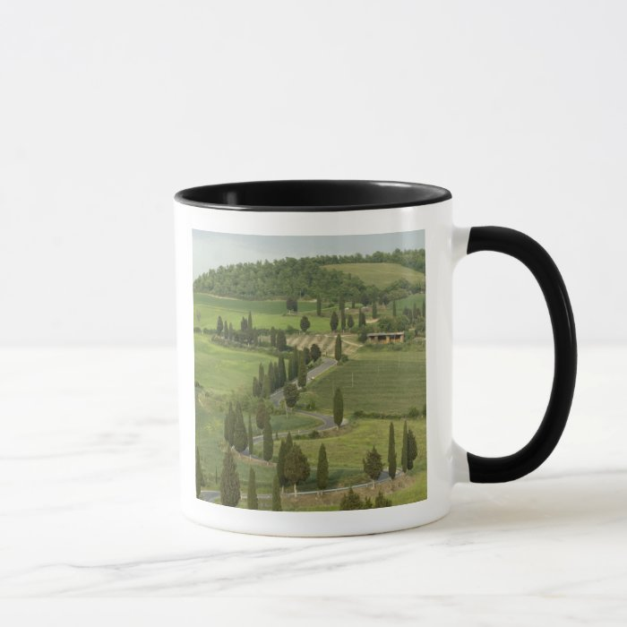 Road from Pienza to Montepulciano, Mug
