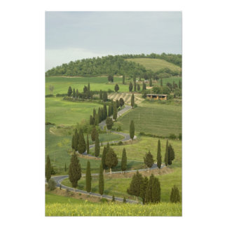 Road from Pienza to Montepulciano, Photo Print