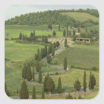 Road from Pienza to Montepulciano, Square Sticker