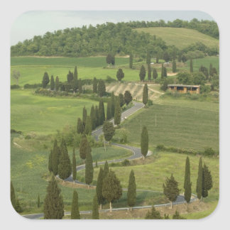 Road from Pienza to Montepulciano, Square Sticker