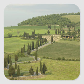 Road from Pienza to Montepulciano, Square Stickers