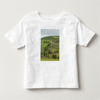 Road from Pienza to Montepulciano, T-shirt