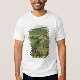 Road from Pienza to Montepulciano, Tee Shirt