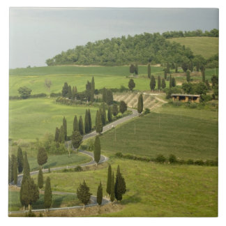 Road from Pienza to Montepulciano, Tile