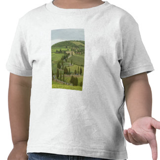 Road from Pienza to Montepulciano, Tee Shirts