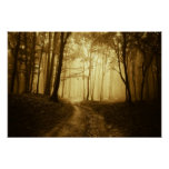 Road in a dark forest with fog print