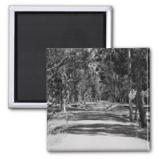 Road In A Park Magnet