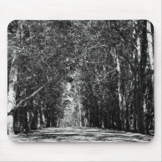 Road In A Park Mousepad
