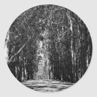 Road In A Park Sticker
