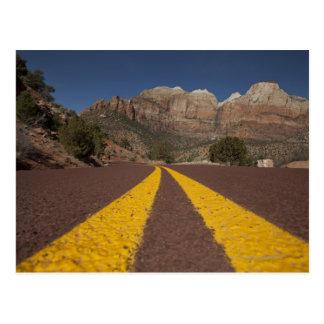 Road-kill viewpoint post cards