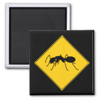 Road Sign- Ant Magnet