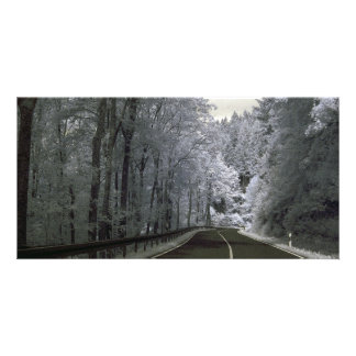 Road through a forest, infrared photography. photo card