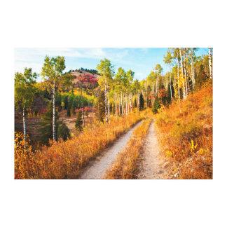 Road Through Autumn Colors Canvas Print