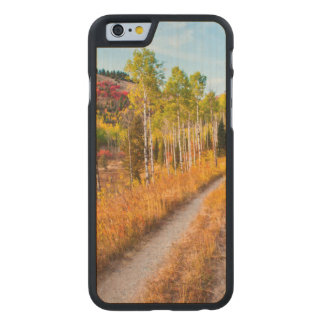 Road Through Autumn Colors Carved Maple iPhone 6 Case