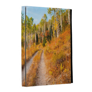 Road Through Autumn Colors iPad Folio Cases