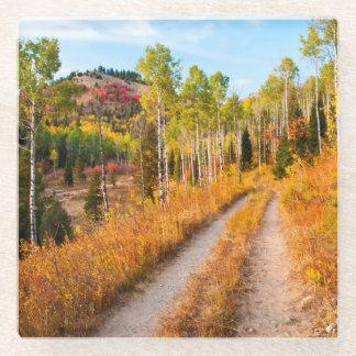 Road Through Autumn Colors Glass Coaster