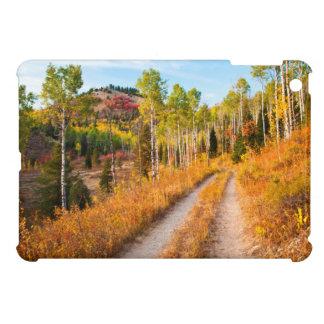 Road Through Autumn Colors iPad Mini Case