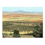 Road to Ciudad Real from Orgaz, Castilla-La Mancha Postcard