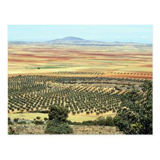 Road to Ciudad Real from Orgaz Castilla-La Mancha Postcard